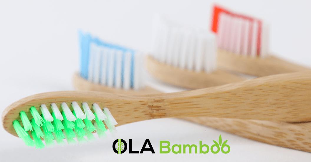ola bamboo brosses dents en bambou. Black Bedroom Furniture Sets. Home Design Ideas