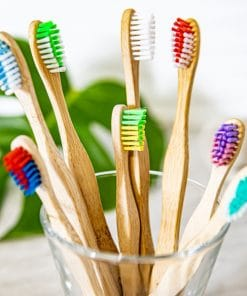brosses à dents en bambou paquet familial