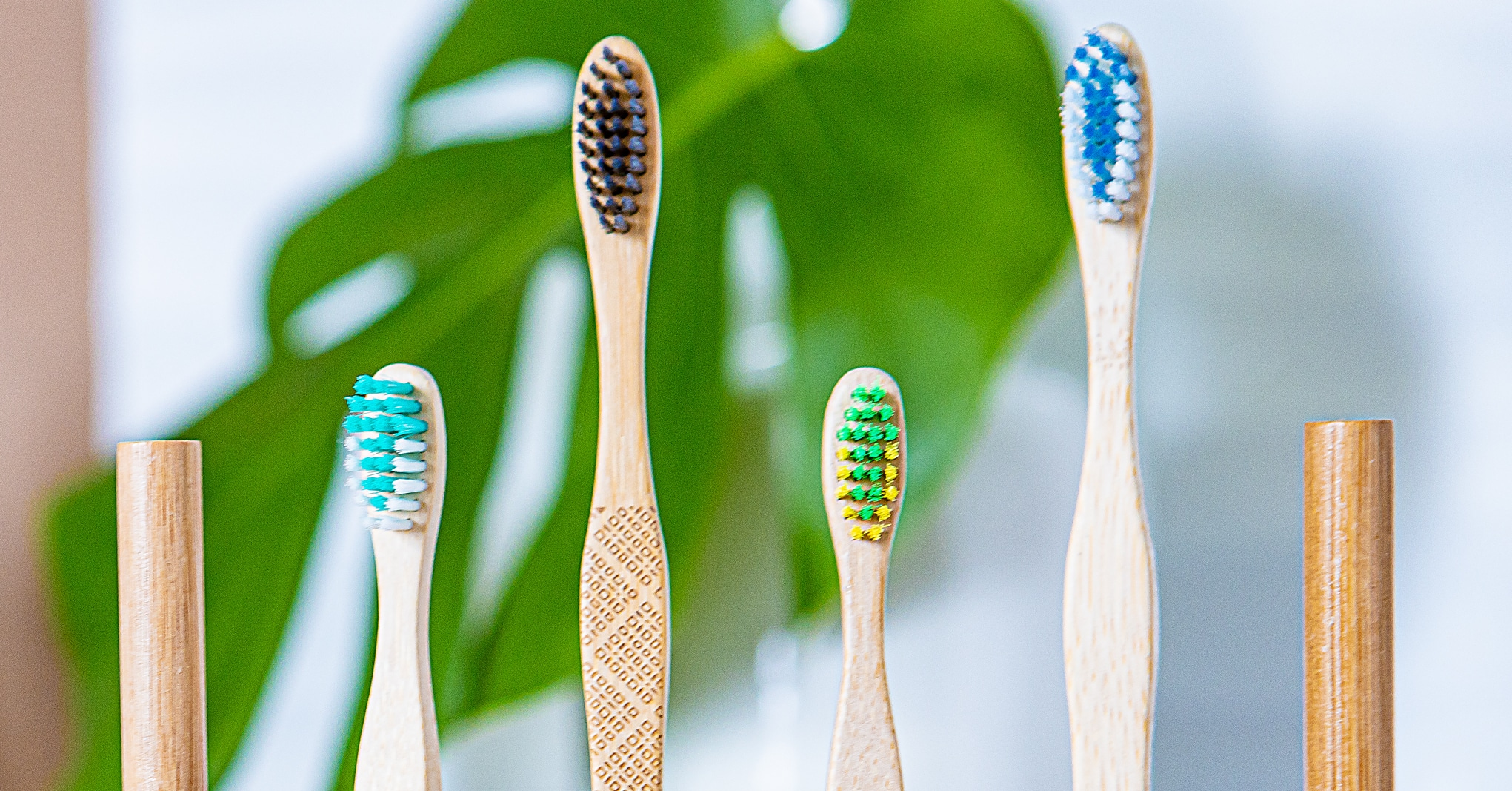 How Often Should You Change Your Toothbrush?